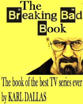 BreakingBadBookCover